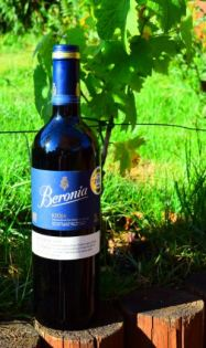 Beronia Bottle